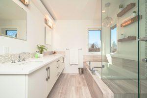 bathroom layout- home renovation